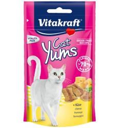 Vitakraft Yumuşak Kedi Ödül Peynirli 40gr