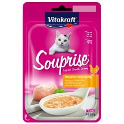 Vitakraft Kedi Sıvı Ödül Tavuklu Çorba 4 adet x 20gr